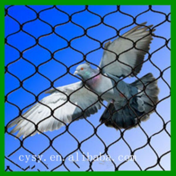 Catching Bird <strong>Netting</strong>/ Bird Control <strong>Netting</strong> /bird nets for catching birds
