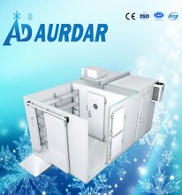 Air Blast Freezer & Cold storage Plant for food