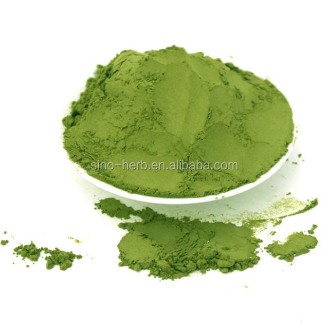 Free Sample Health Japanese Style Organic Matcha Powder Green Tea