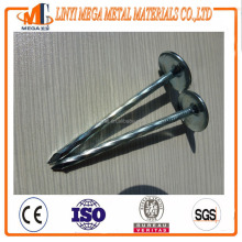 twisted shrank umbrella head zinc coated roofing nail made in china factory