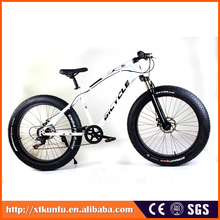 New model popular full suspension 20 inch fat bike with Carbon steel frame