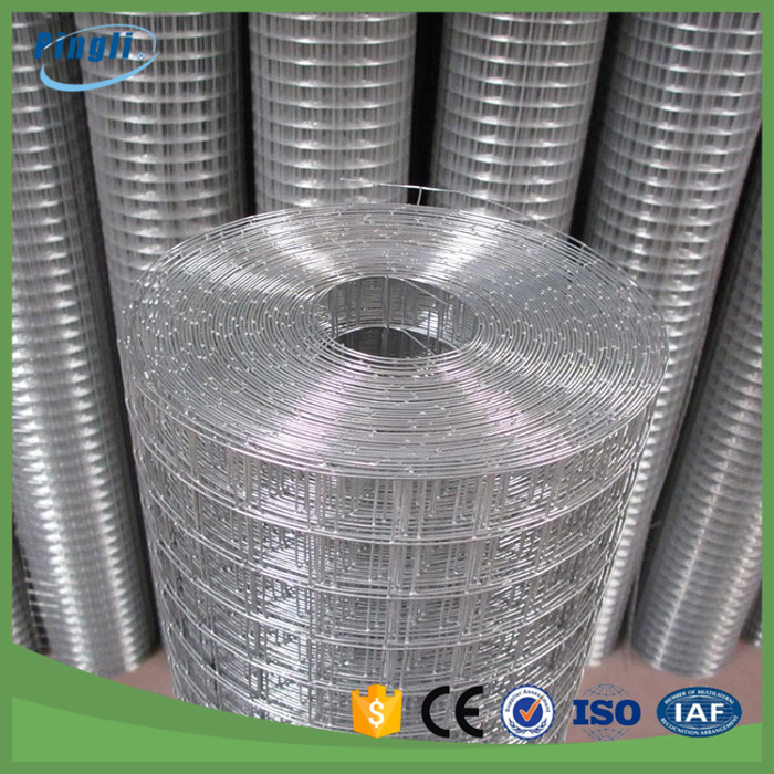China Wholesale 2x2 galvanized welded wire mesh