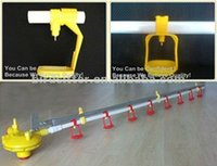 Chiken farm equipment poultry cup drinkers plastic chicken pvc waterer