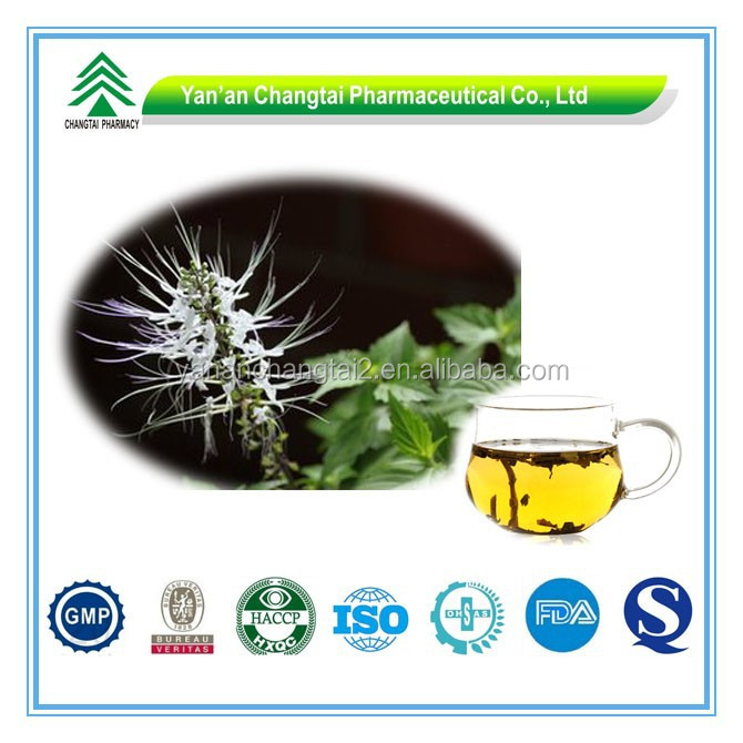Hot Sale GMP Certificate 100% Pure Natural Clerodendranthus spicatus