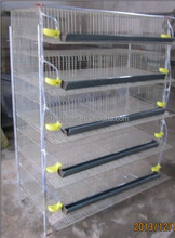 Stainless galvanized steel birds cages /cages of quais /quail battery cages for sale