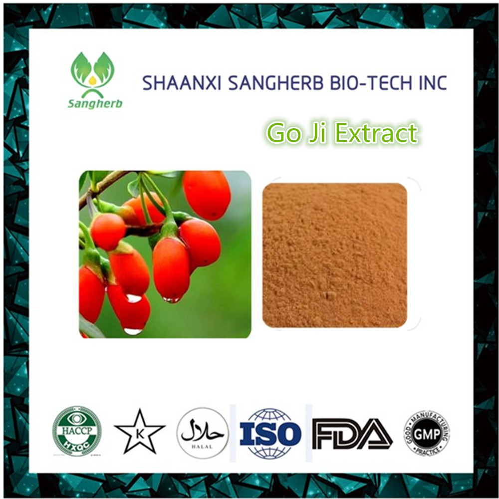 China wholesale Barbury Wolfberry Fruit P.E. Goji Berry Extract