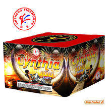 1.3G (UN0335) Professional 100S Cake Fireworks
