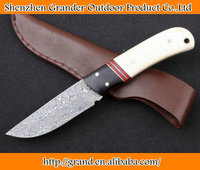 Ebony + Ox horn handle Damascus Steel knife Survival knife leather sheath 4165