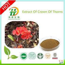 GMP Factory Supply High Quality Flower Extract Of Crown Of Thorns