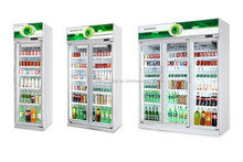 Swing Door Glass Cooler/Freezer