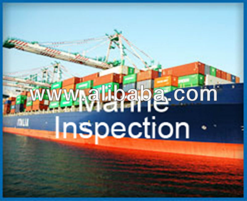 MARINE N CARGO SURVEY/ INSPECTION