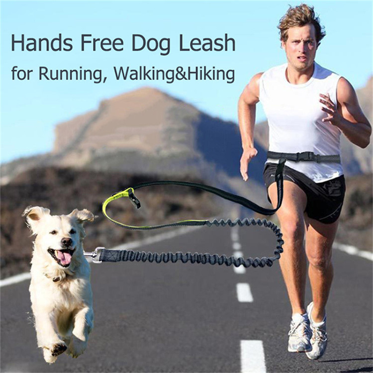 Reflective Bungee Dog Walking Leash Adjustable Hands Free Elastic Waist Dog Pet Running Lead for Small Medium Dogs