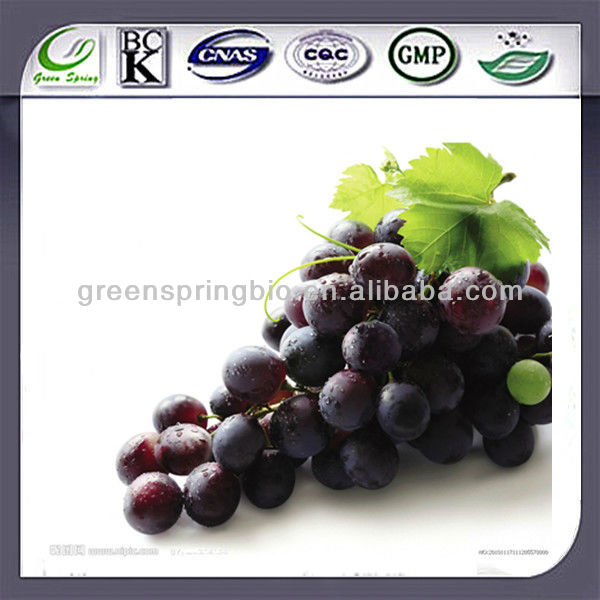 black grape seed extract standard proanthocyanidin,natural black grape seed extract