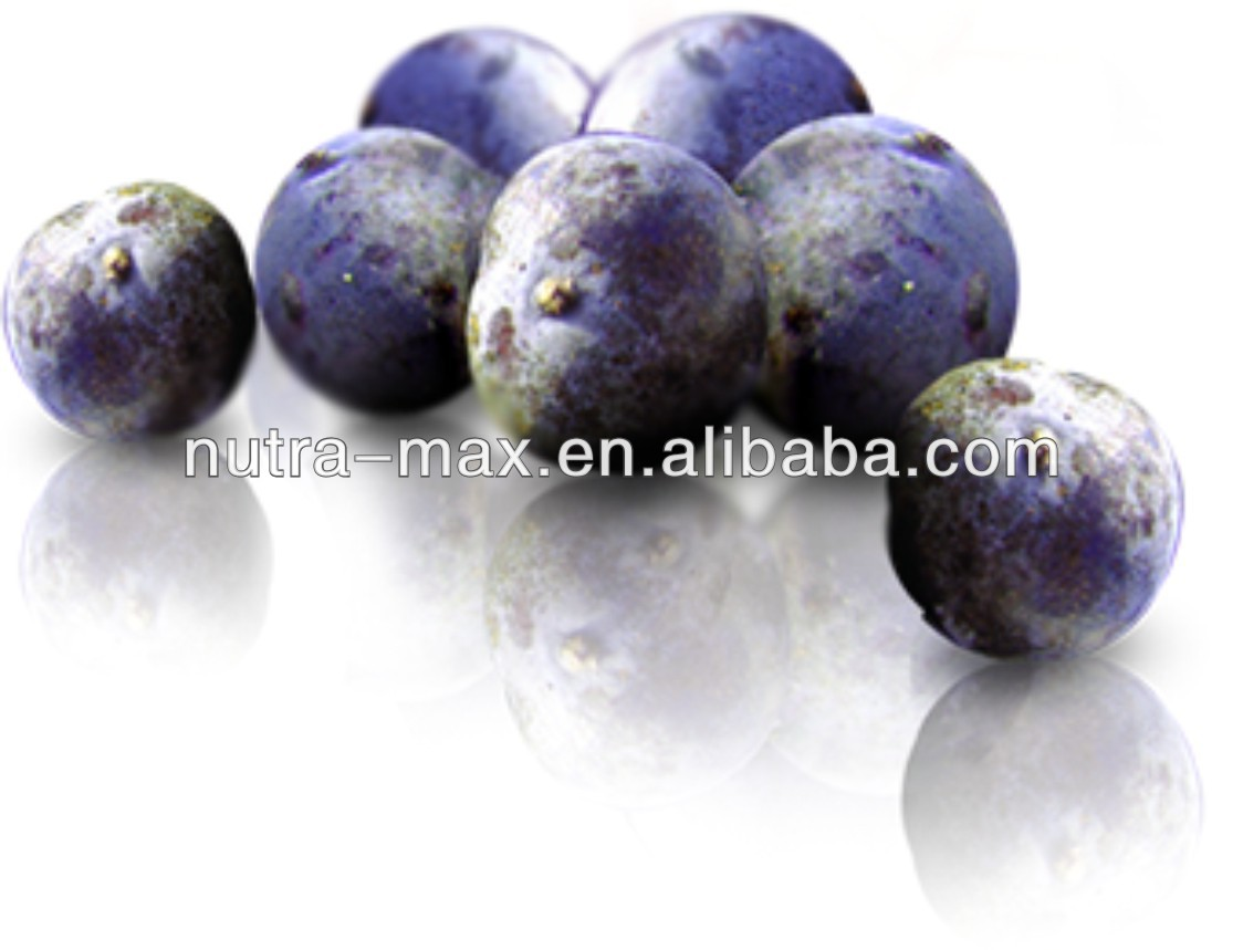 acai dry extract,brazilian acai berry extract,acai berry fruit extract- NutraMax Factory