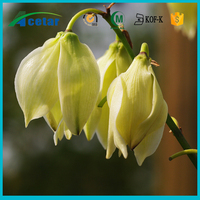 free samples yucca plant extraction saponins powder 60%