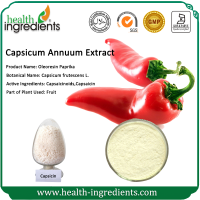 GMP supplier strong and high quality 404-86-4 capsaicin