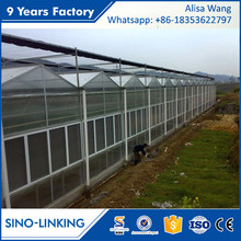 SINOLINK low cost agricultural greenhouse garden Polycarbonate greenhouse for mushroom farm