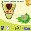 /product-detail/avocado-seed-powder-60437958321.html