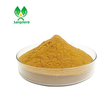 Professional factory supply high quality olive leaf extract /oleuropein powder