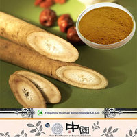 Natural great Burdock Root Extract Citrus Aurantium Extract