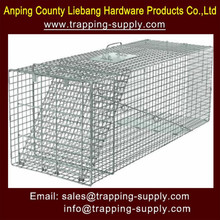 Animal Cage Trap Live Liebang Humane Large Raccoon Skunks Rabbit Dog Door