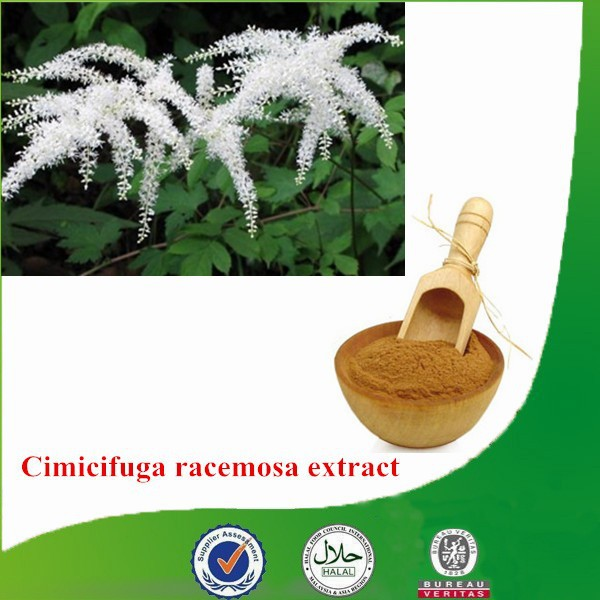 Factory supply Natural & Pure competitive-price Cimicifuga racemosa extract, Triterpenoid saponis, Black Cohosh Extract