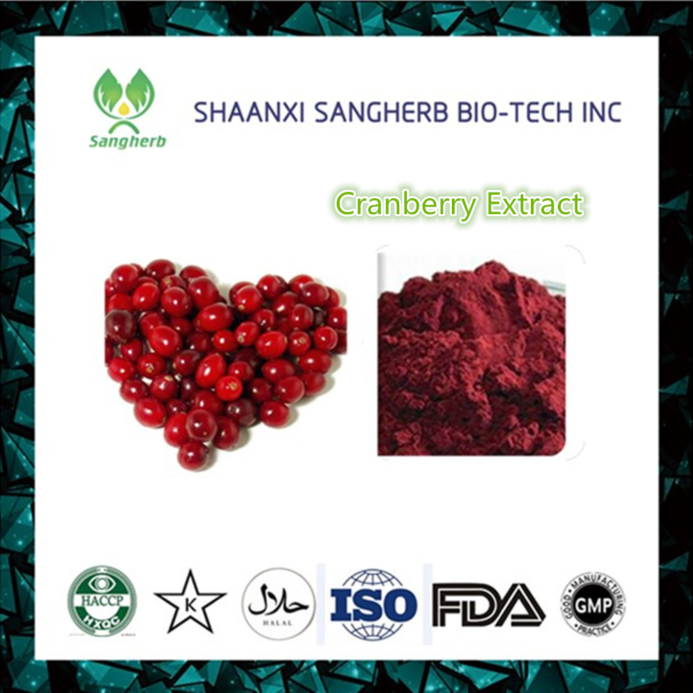 High quality Cranberry Extract/Cranberry Extract Powder/Cranberry Juice Extract
