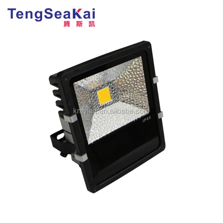 60W flood light.jpg
