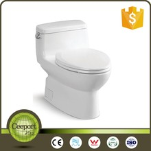 Ceeport white ceramic sanitary ware one piece floor mounted economic water closet toilet CUPC certificate