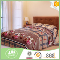 Hot Selling Fashion Printed Flannel Blanket for dubai