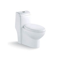 131 cupc one piece toilet bowl from Kingson
