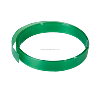 Guangdong high strength pp printable plastic packing belt