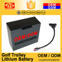 OEM ODM Customizable >2000 Cycles LiFePO4 High Power T-Bar Connector Electric Golf Cart Trolley Lithium Battery