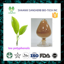 Pure natural red / white / oolong tea extract with best quality and low price