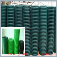 China Supplier PVC Coated Iron Welded Mesh Expot to Dubai