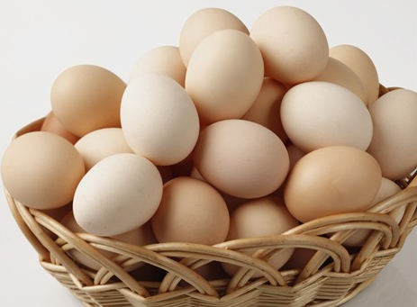 fresh egg exporter in kenya suppliers from