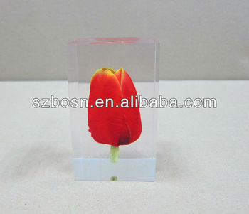 Clear Acrylic Paperweight with Tulip Inside, Lucite Cube, Acrylic Block