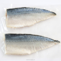 Japanese pacific Mackerel fillet(vinegar cure)