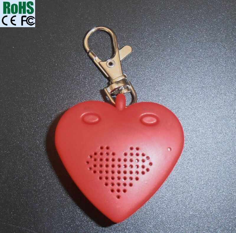 Wonderful Music Songs With Custom Message Recording Keychain