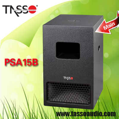 Professional Public Address Outdoor Sound Speaker System