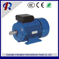 250W 220v 2800rpm AC electric motor with two capacitors