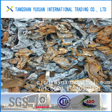 ISRI 210 or 211 10,000mt Ready Shipped Shredded Steel Scraps