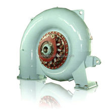 Alternator for Water Turbine Francis Generator and Hydro Turbine Generator For Hydro Power Plant Project