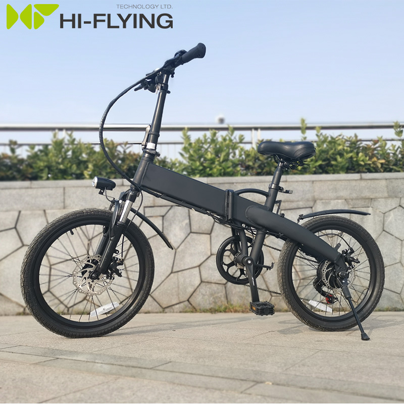 36V 250W 20inch New <strong>City</strong> e bike Folding electric bicycle/electric bike/ebike/fat tire ebike for Lady F504