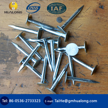 Bright flat caps galvanized roofing nails ISO9001/Flat Head Clout Nails/Polishing Clout Nails