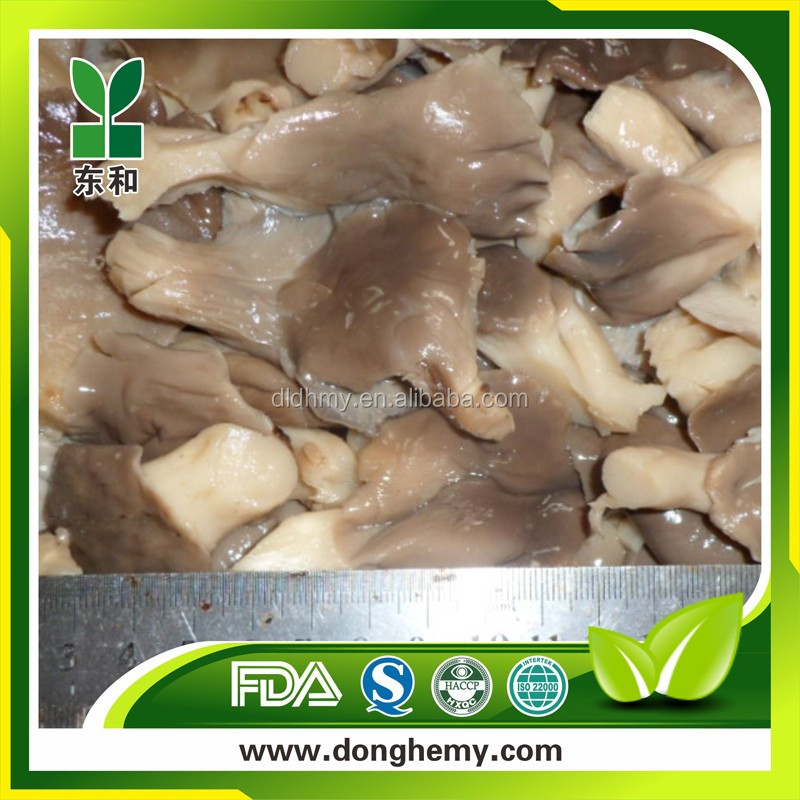 mushrooms oyster mushroom in brine pleurotus ostreatus