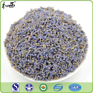 High Quality Chinese Premium Dried Lavender