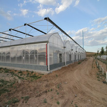 Galvanized Steel Frame Middle East/Africa uv treated plastic film greenhouse