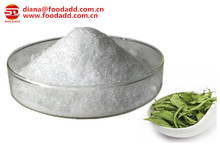 High Quality Stevia Extract Supplier