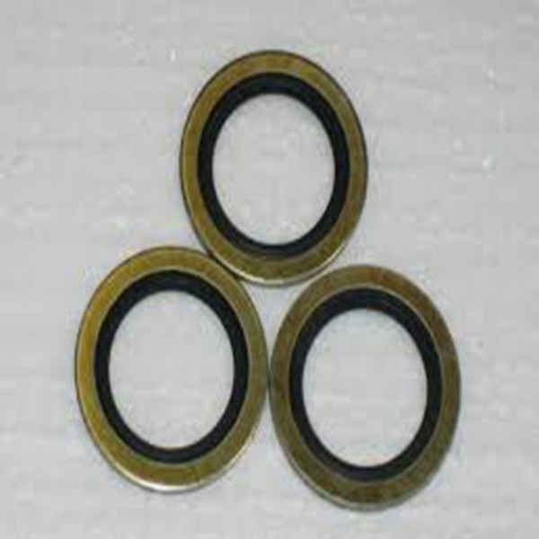 Ideal fittings ss spring washer